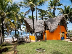 Bungalow on the beach surrounded by palm trees