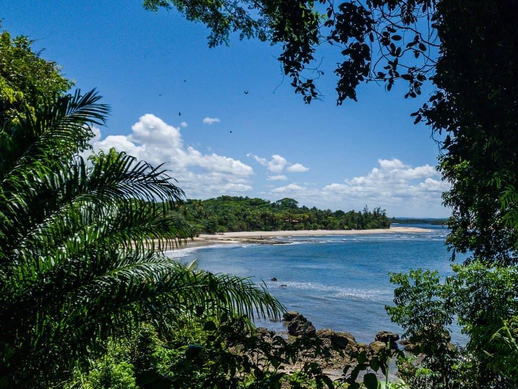 Bay of Boipeba island through the trees